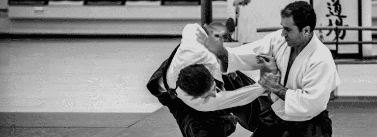 Aikido stage